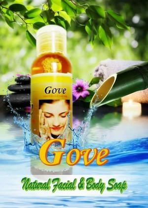 Sabun Gove Cair Original Promo