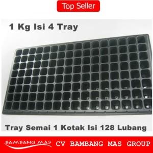 Tray Semai / Bibit Untuk Benih Tanaman (Bentuk kotak kecil)
