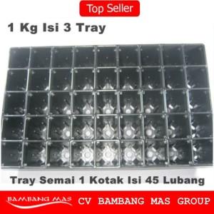 Tray Semai / Bibit Untuk Benih Tanaman (Bentuk kotak besar)