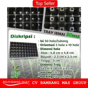 Pot Tray Semai 50 Lubang Hole / Tray Semai Benih Bibit Tanaman