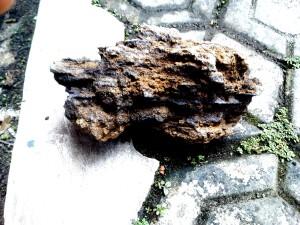 Batu Besi Aquascape ukuran 2 kg terbaik