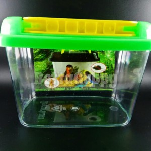 Pet Home Sweet Aquarium | Soliter | Akuarium Cupang Guppy Hamster Kura