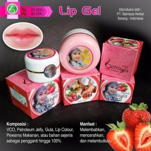 Lip Gel Batrisyia Herbal 45 gr/Lip Gel VCO/Gel Pencerah Bibir