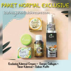 Paket Perawatan Wajah Batrisyia Skincare untuk Kulit Normal