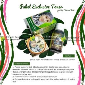 Paket Batrisyia Exclusive Toner/Paket Perawatan Wajah Kering & Normal