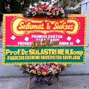 Jual Bunga Papan Selamat Sukses Promosi Doktor Wisuda Graduation Sertijab Jakarta Pusat Popo Shop Online Tokopedia