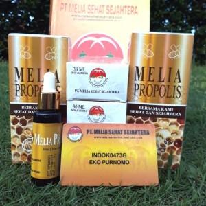Paket Melia Propolis 30ml Asli Isi 5 botol