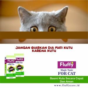 Obat Kutu Kucing Aman