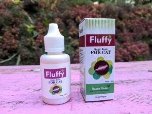 Obat Kutu Kucing Kucing Ampuh