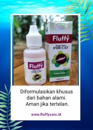 Obat Kutu Kulit Skabies Kucing Natural