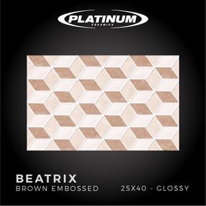 Platinum Ceramics - BEATRIX BROWN EMBOSSED - 25X40cm - Glossy - F.D.