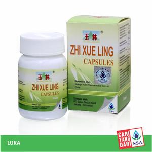 ZHI XUE LING CAPSULES 24's (YULIN)