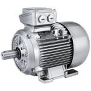 Pompa Siemens TEFC 0.75Kw 1Hp 220/380V 3 Phase 50Hz