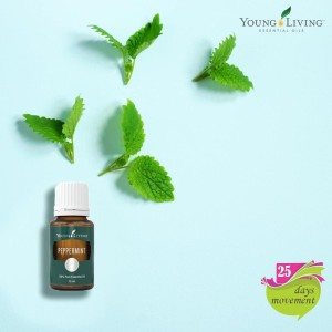 Youngliving Essential Oil Peppermint