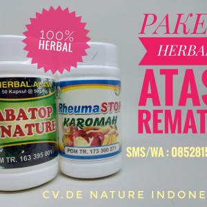 Obat Rematik Herbal Alami De Nature Indonesia