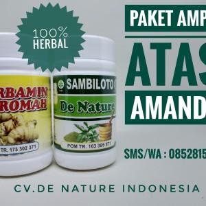 Obat Amandel Herbal Alami De Nature Indonesia