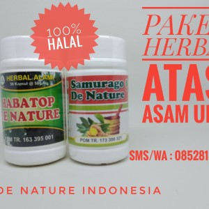 Obat Asam Urat/Pegal Linu Herbal De Nature