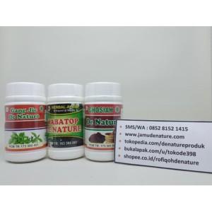 Obat Sipilis/Gonore/Kencing Nanah Herbal De Nature