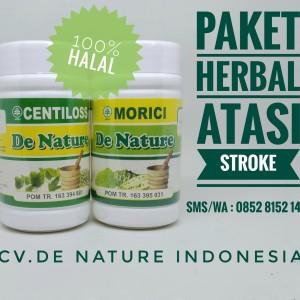 Obat Herbal Stroke CENTILOSS+MORICI De Nature