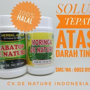 Obat Herbal Kolesterol/Darah Tinggi De Nature