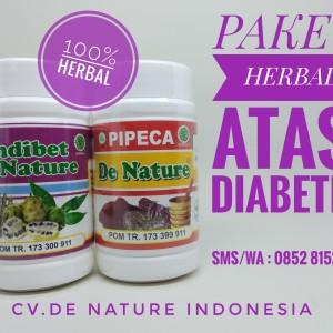 Obat Diabetes Herbal Alami De Nature
