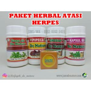 Paket Lengkap Obat Herbal Herpes De Nature