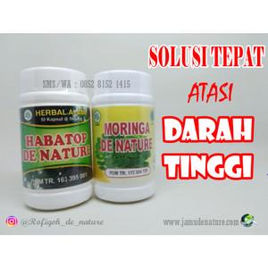 Obat Herbal Hipertensi/Darah Tinggi De Nature