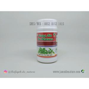 GANG JIE Obat Herbal Kencing Nanah De Nature