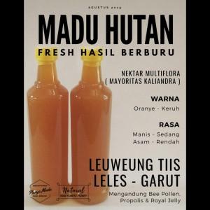 MADU HUTAN LELES GARUT 485 Gram FRESH MURNI ASLI LIAR