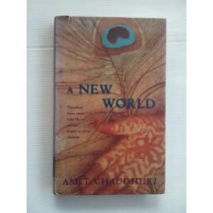 A New World by Amit Chaudhuri
