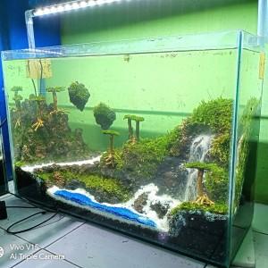 Jual Aquascape Avatar Versi 60cm Slim Jakarta Selatan Raafi Aquatic Tokopedia