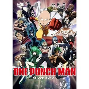 Jual One Punch Man Subtitle Indonesia Jakarta Barat Anime14dvd Tokopedia