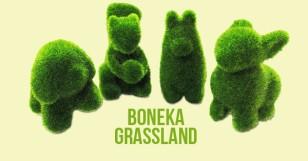Boneka Grass Land