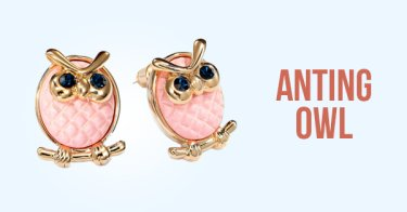 Anting Owl