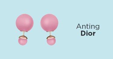 Anting Dior