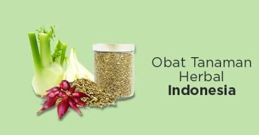 Obat Tanaman Herbal Indonesia