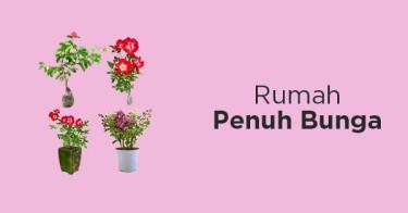 Bibit Bunga Kebun Bibit