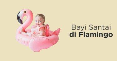 Ban Renang Flamingo Bayi