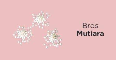 Bros Mutiara Sumatera Selatan