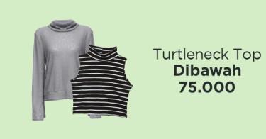 Turtleneck Top