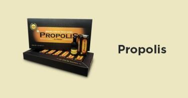 Propolis Aceh