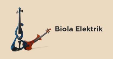 Biola Elektrik DKI Jakarta