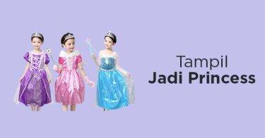Dress Princess Anak