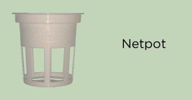 Netpot Jawa Timur