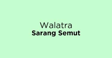 Walatra Sarang Semut