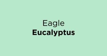 Eagle Eucalyptus