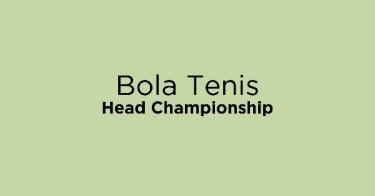 Bola Tenis Head Championship