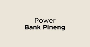 Power Bank Pineng
