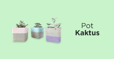 Pot Kaktus Bandung