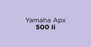 Yamaha Apx 500 Ii